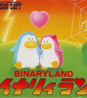 Binary Land